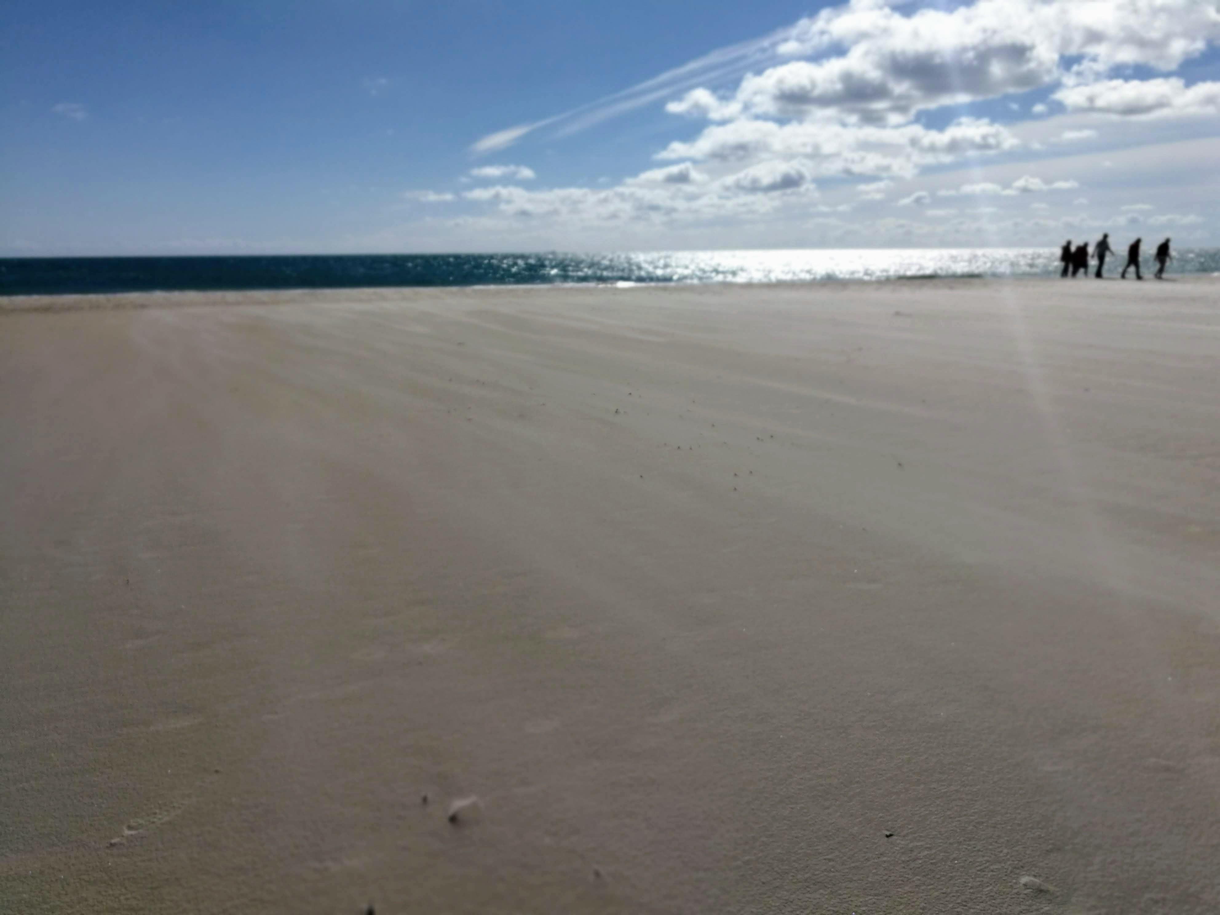 sand forever, Skagen